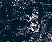 西洋星座手繪線描圖:Canis Major   -   Большой Пес.JPG