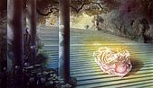 童話故事插畫名家KINUKO Y CRAFT:384530-MA_KINUKO_Y_CRAFT_CINDERELLA_12-EMBED.JPG