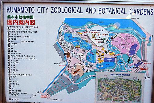 動 植物園 市 熊本