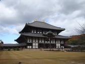 2011日本奈良散策:奈良 (49).JPG