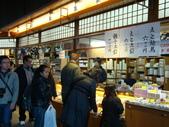 2011日本奈良散策:奈良 (67).JPG