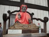 2011日本奈良散策:奈良 (68).JPG
