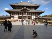 2011日本奈良散策:奈良 (50).JPG