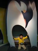 2011大阪自由行雜記:大阪天保山海遊館 (40).JPG
