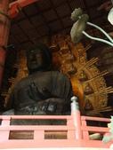 2011日本奈良散策:奈良 (65).JPG