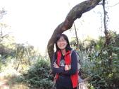 2013-01-19大暖尖步道:2013-01-19大暖尖步道0015.JPG