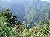 2009-10-17加羅湖:2009-10-17加羅湖_0007.JPG