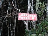 2009南插天山:200901-09南插天山_0046.JPG