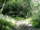 2009-10-17加羅湖:2009-10-17加羅湖_0010.JPG
