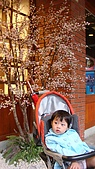 20081011宜蘭傳統藝術中心:DSC03049.jpg