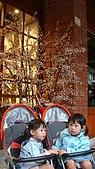 20081011宜蘭傳統藝術中心:DSC03052.jpg