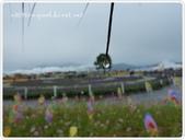 101-12-09@台中新社花海:P1060338.JPG