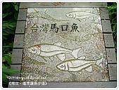 98-09-1213-南庄二日遊:SANY0369.JPG