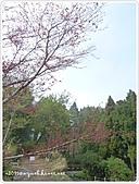100-03-12-苗栗_雪見‧泰安山路行:P1000444.JPG