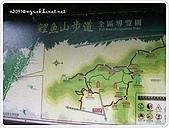 99-11-2022-台東‧鐵道漫遊之南島文化節:SANY0257.jpg
