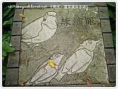 98-09-1213-南庄二日遊:SANY0375.JPG