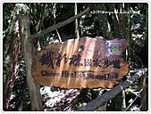 99-07-03-宜蘭太平山之旅:SANY0054.JPG
