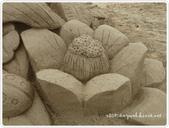 100-05-01-福隆國際沙雕藝術節:P1000762.JPG