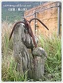 98-08-2931-前進龜山島 vs 東西冷泉大評筆:SANY0157.jpg