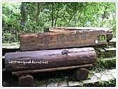 99-07-03-宜蘭太平山之旅:SANY0063.JPG
