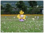 101-12-09@台中新社花海:P1060324.JPG