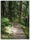 99-07-03-宜蘭太平山之旅:SANY0064.jpg