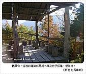97-12-2021-司馬庫斯:SANY0063.JPG