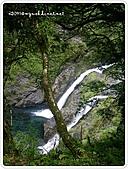 99-07-03-宜蘭太平山之旅:SANY0068.jpg