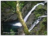 99-07-03-宜蘭太平山之旅:SANY0071.jpg