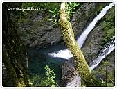 99-07-03-宜蘭太平山之旅:SANY0072.JPG