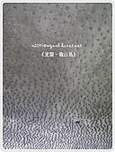 98-08-2931-前進龜山島 vs 東西冷泉大評筆:SANY0181.jpg