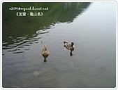 98-08-2931-前進龜山島 vs 東西冷泉大評筆:SANY0187.JPG