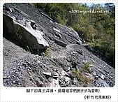 97-12-2021-司馬庫斯:SANY0119.JPG