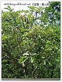 98-08-2931-前進龜山島 vs 東西冷泉大評筆:SANY0236.jpg