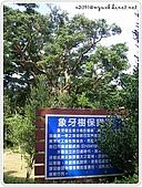 98-1129~1201-墾丁鹿港避寒遊:SANY0482.jpg