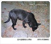 97-12-2021-司馬庫斯:SANY0170.JPG