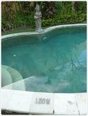 101-04-21-峇里島蜜月自助旅行(2):P1020579.JPG