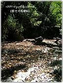 97-12-2021-司馬庫斯:SANY0178.jpg