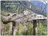 97-12-2021-司馬庫斯:SANY0183.JPG