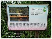 98-05-02-大艽芎古道‧桐花祭:SANY0256.JPG
