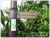 98-05-02-大艽芎古道‧桐花祭:SANY0257.JPG
