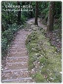 98-05-02-大艽芎古道‧桐花祭:SANY0291.jpg