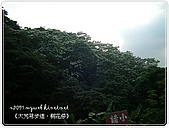 98-05-02-大艽芎古道‧桐花祭:SANY0298.JPG
