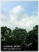 98-05-02-大艽芎古道‧桐花祭:SANY0299.jpg