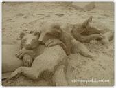 100-05-01-福隆國際沙雕藝術節:P1000798.JPG