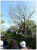 100-02-27-薰衣草森林-苗栗明德店:P1000315.JPG