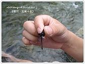 98-08-2931-前進龜山島 vs 東西冷泉大評筆:SANY0307.jpg