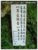 98-09-1213-南庄二日遊:SANY0329.jpg