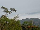98..0308杉林溪:DSCN5724.JPG