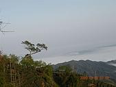 98..0308杉林溪:DSCN5702.JPG
